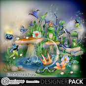 Enchanted_frog-01_medium