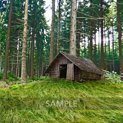 House_in_the_woods5