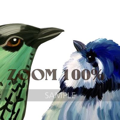 Florju_cuvol162_paintedbirds_zoom__2_