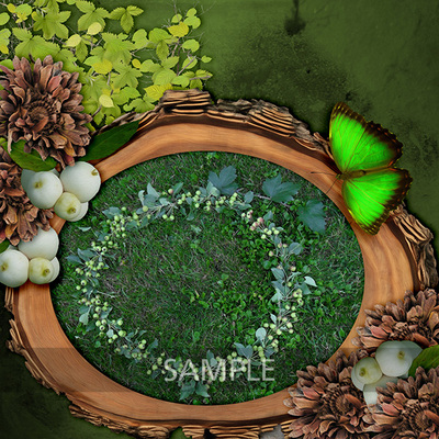 Mg_forestmist_lo1_sample
