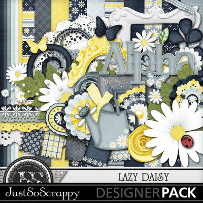 Lazy_daisy_kit