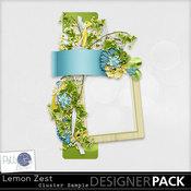 Pbs_lemonzest_samplecluster_prev_medium