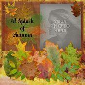 A_splash_of_autumn_12x12_book-001_medium