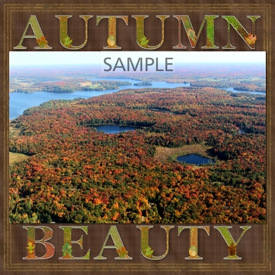 A_splash_of_autumn_solid_papers-02