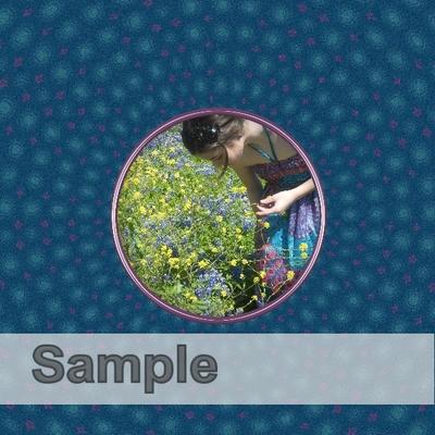 Sample-016
