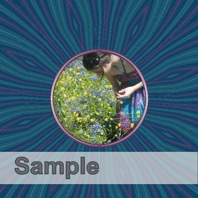 Sample-009