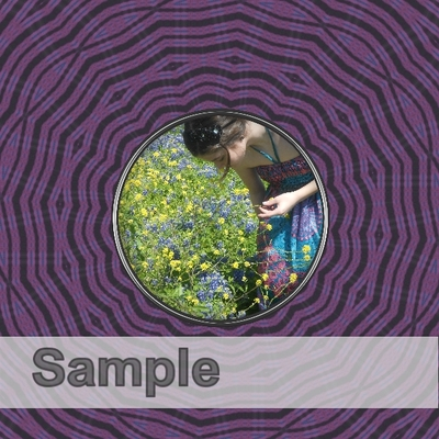 Sample-017