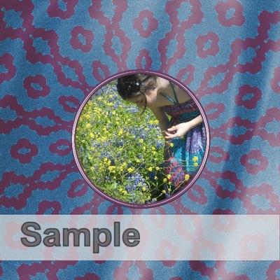 Sample-013