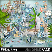 Plidesigns_paradisbeach_pv_medium