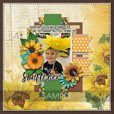 Lashawn-sunflowersayings