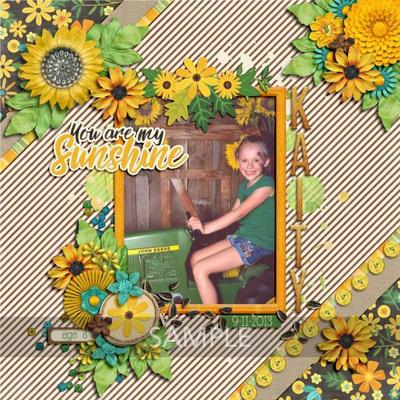Lisak-sunflowersayings