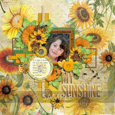 Meaganb-sunflowersayings