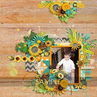 Tammy-sunflowersayings