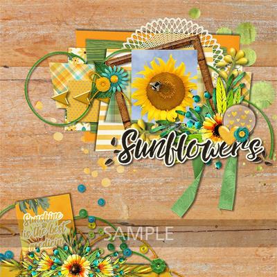 Teresac-sunflowersayings