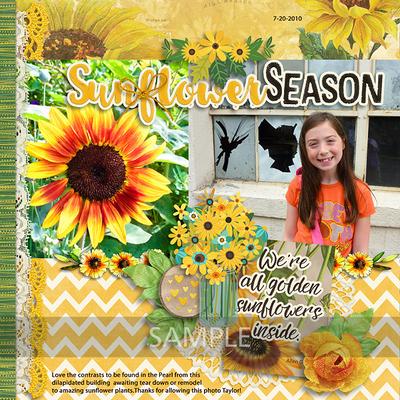 Tracey-sunflowersayings