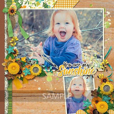 Jerilie-sunflowersayings