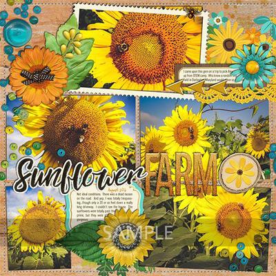 Jennifernv2-sunflowersayings