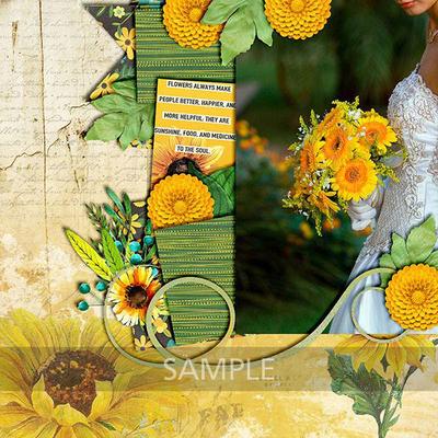 Elizabethh2-sunflowersayings