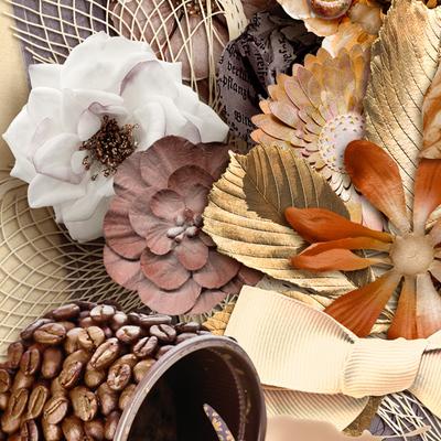 Cinnamonnutmeg_pkall_closeup4_600