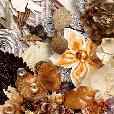 Cinnamonnutmeg_pkall_closeup3_600