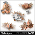 Plidesigns_noelcuivre_pvemb_small
