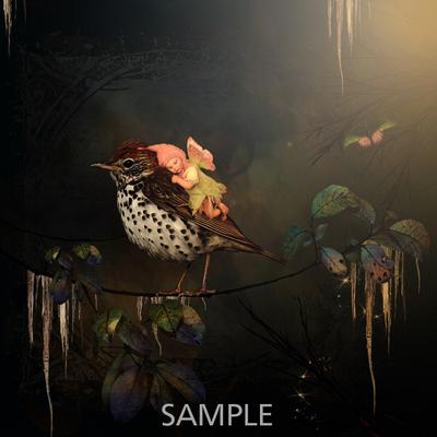 Everwinter-magicalreality-prev-bundle011