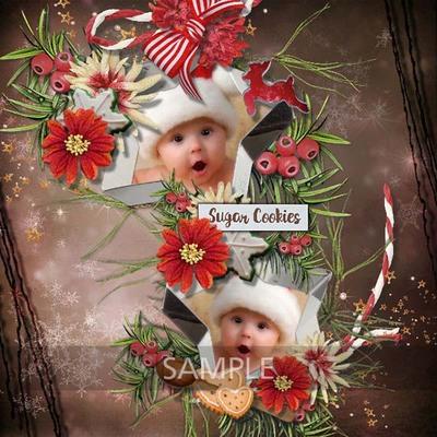 Florju_christmascake_page__2_