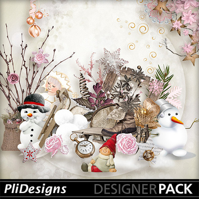 Plidesigns_wintergift-pv
