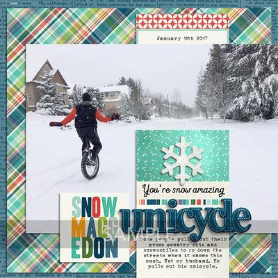 2-20170111-unicycle1