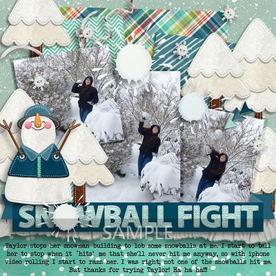 5-20170111-snowballs