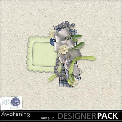 Pbs_awakening_cluster_sample1_prev