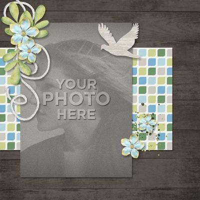 Beautifulnaturephotobook-012