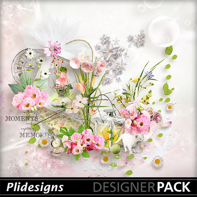 Plidesigns_windoffreshness