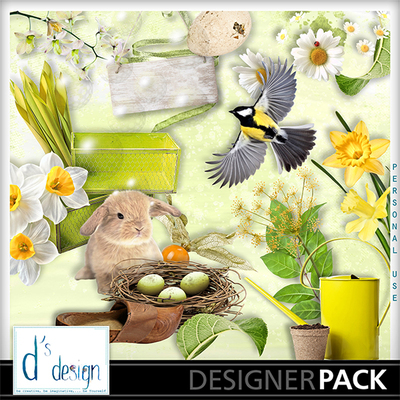 Sunny_spring_kit_and_alpha-001