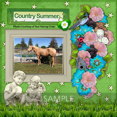 Kjd_countrysummer_lo1_sample