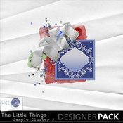 Pbs_the_little_things_sample_cluster2_medium
