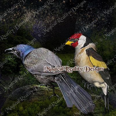 Magicalreality_paintedbirds4