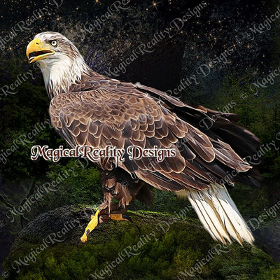 Magicalreality_paintedbirds5