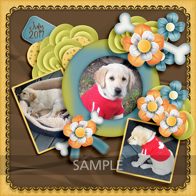 Mg_pawpals_lo1_sample