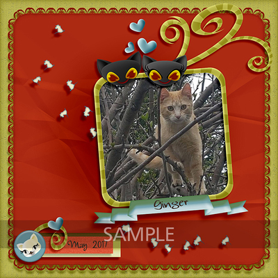 Mg_pawpals_lo3_sample
