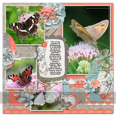 Butterflyk_lo12