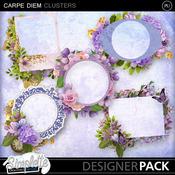 Simplette_carpediem_clusters_pvmm_medium