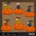 Crow_on_pumpkin_small