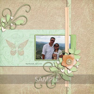 Sample_image_2