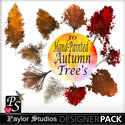 Autumn_trees_small