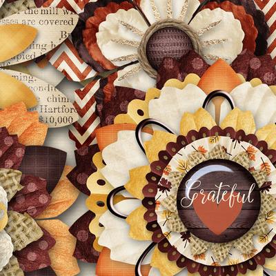 Oll_grateful_flowerss2