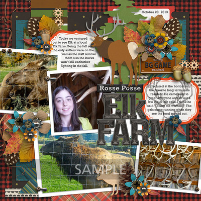 15-20131020-rosse-posse-elk-farm1-8x8
