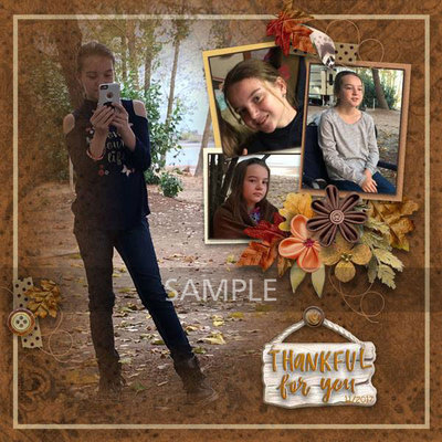 Fall_sample2