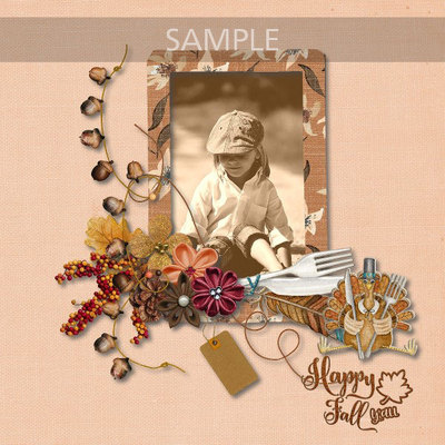 Fall_sample3