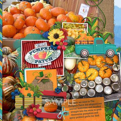 1-20170924-the-pumpkin-patch-pg1
